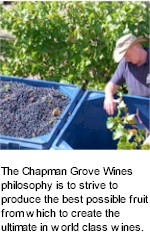 About the Chapman Grove Winery