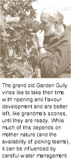 About Garden Gully Winery