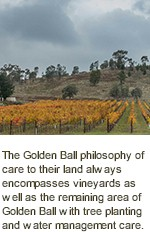More About Golden Ball Wines
