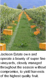 http://www.jacksonestate.co.nz/ - Jackson Estate - Top Australian & New Zealand wineries