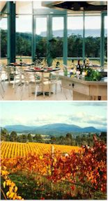 More on the Lillydale Estate Winery