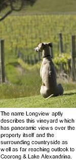 More About Longview Winery