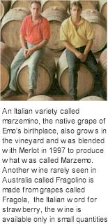 More About Michelini Wines