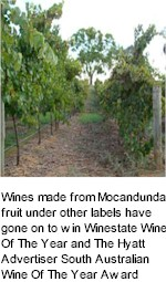 About Mocandunda Winery