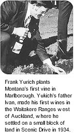 More About Montana Wines