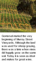About the Murray Street Winery