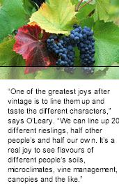 More About OLeary Walker Winery