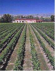 About the Isabel Estate Winery