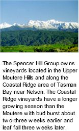 About the Spencer Hill Winery