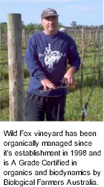 More About Wild Fox Winery