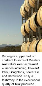 More About Xabregas Wines